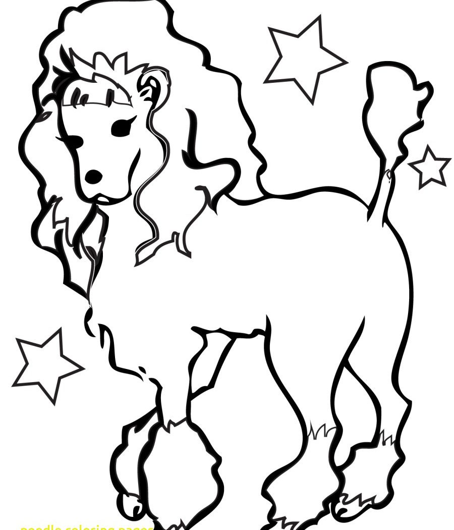 900x1050 Poodle Coloring Page Cartoon Free Printout Dog Pages Printable
