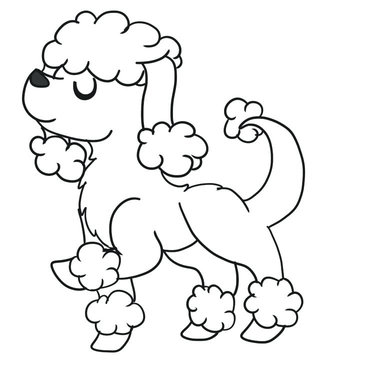 736x736 Poodle Coloring Page Poodle Coloring Pages Sketch Coloring Page