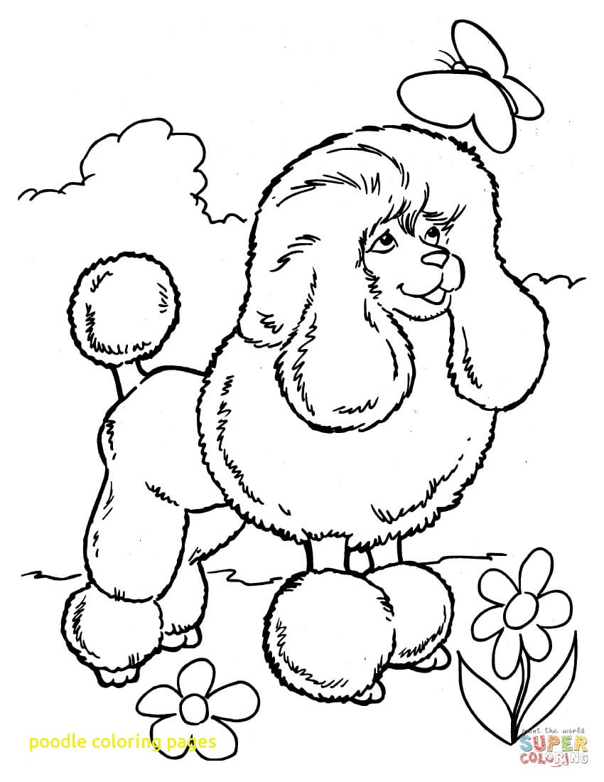 850x1100 Poodle Coloring Pages With Poodle Coloring Page