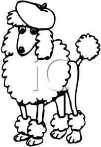 205x300 Black And White Poodle Wearing A Beret Silhouettes