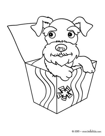 363x470 Poodle Coloring Pages