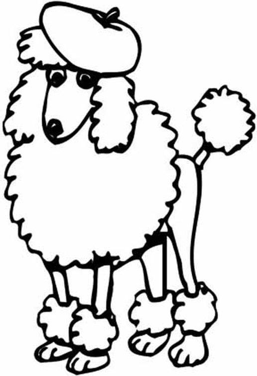 Poodle Line Drawing At GetDrawings