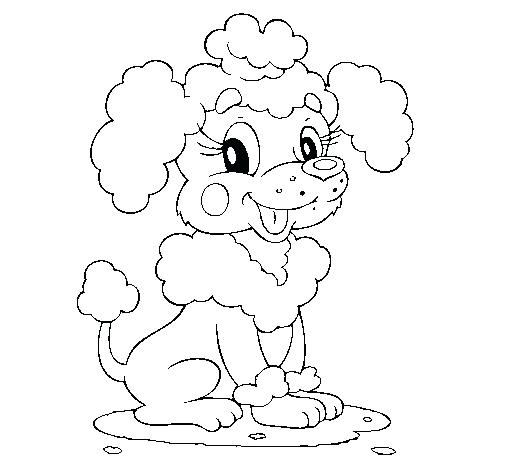 505x470 Poodle Coloring Page Poodle Coloring Page Poodle Skirt Coloring
