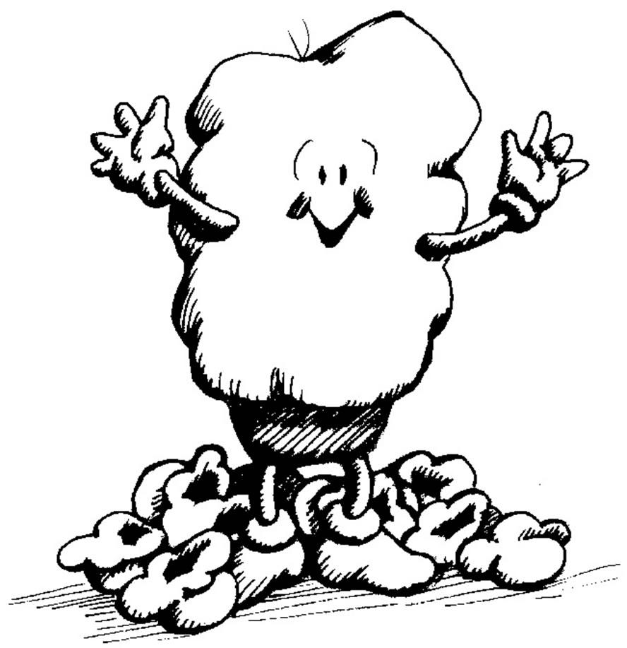 Popcorn Kernel Drawing at GetDrawings | Free download