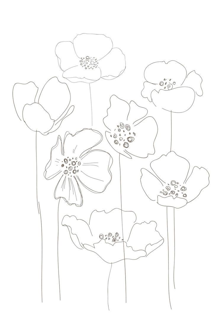 750x1061 Poppies, Would Make A Interesting String Print Drawing