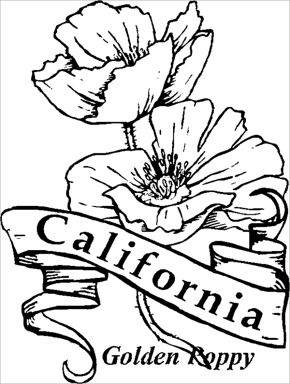 585x774 Poppy Coloring Pages