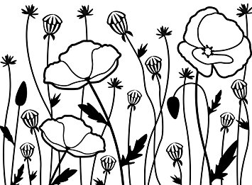 355x261 Darice Poppy Field Embossing Template, Transparent, 10.8 X 14.6 Cm