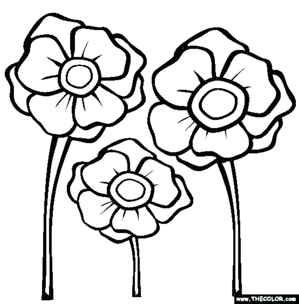 1004x1024 Poppy Template Printable