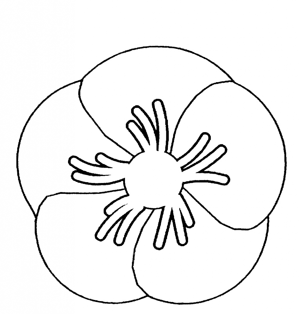 Poppy Flower Drawing At Getdrawings Free For Personal Use