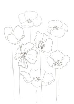 236x333 Drawn Poppy Printable