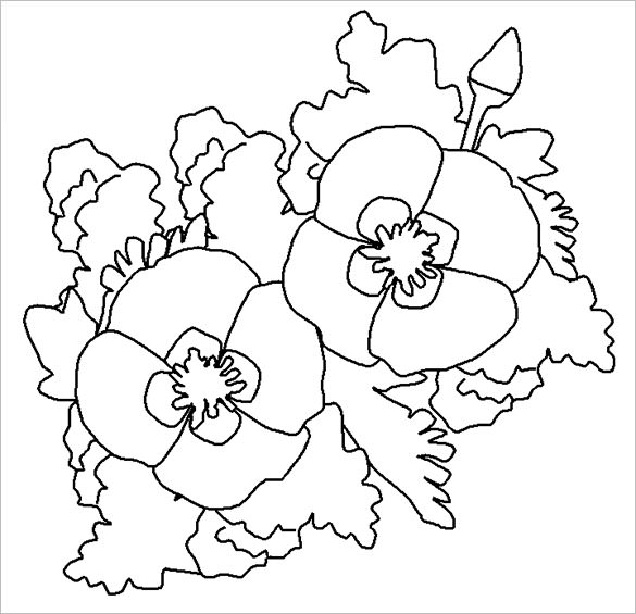 585x565 Poppy Coloring Pages