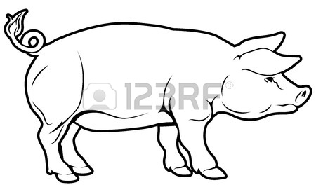 450x274 An Illustration Of A Pig, Could Be A Label For Pork Royalty Free