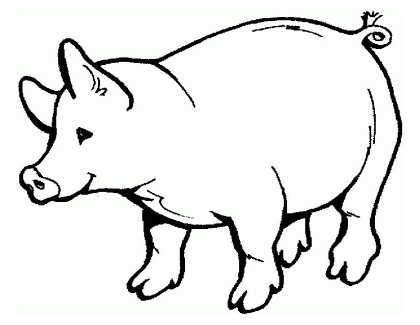 825x638 Pork