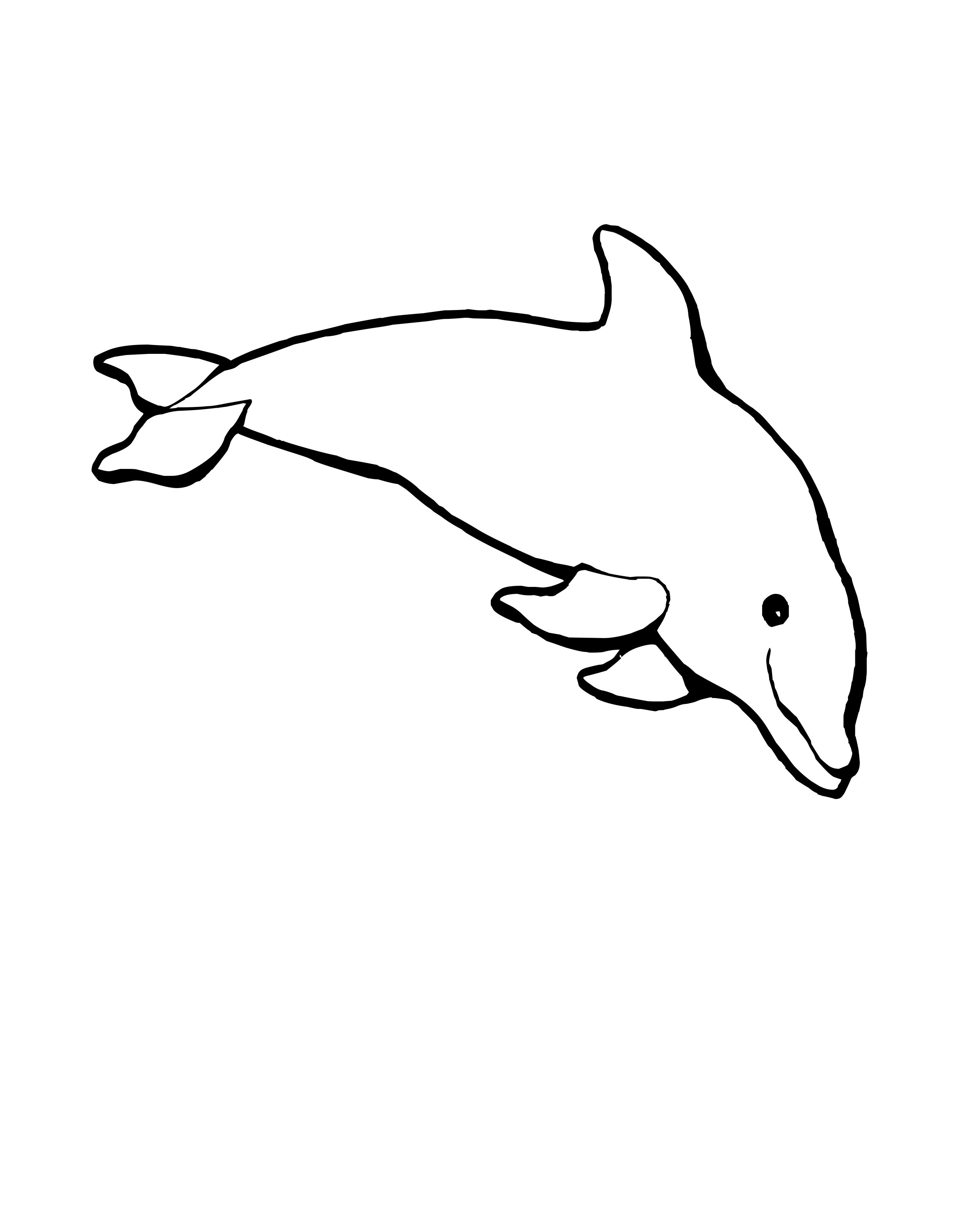 2477x3203 Dolphin Strong Dolphins Kids Net