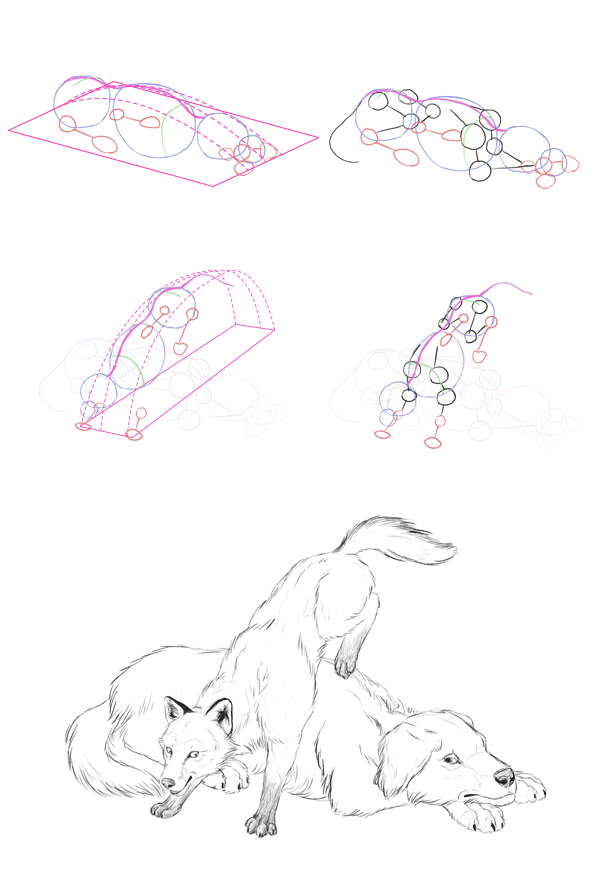 600x885 How To Draw Animals The Importance Of Drawing A Pose
