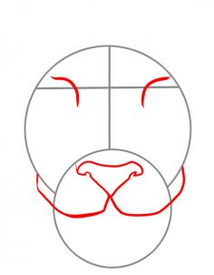 236x302 How To Draw A Tiger Face, Step By Step Tiger Tiger