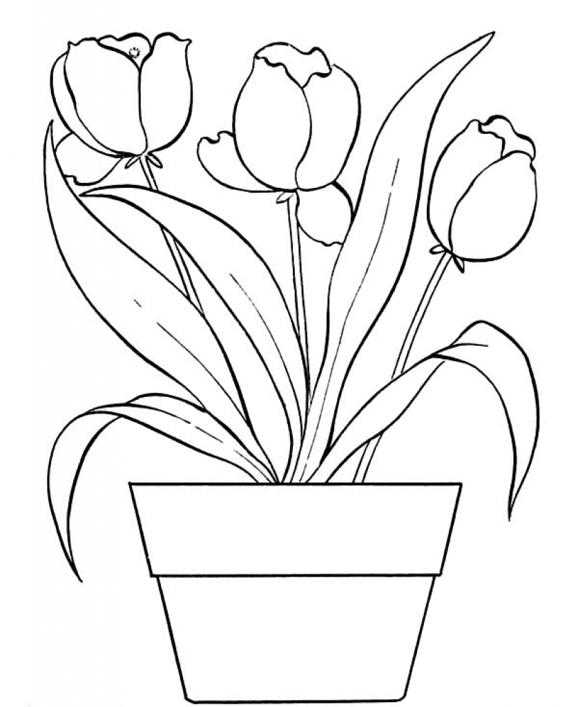 837x1024 Flower Pot Coloring Page Pertaining To Really Encourage In Within