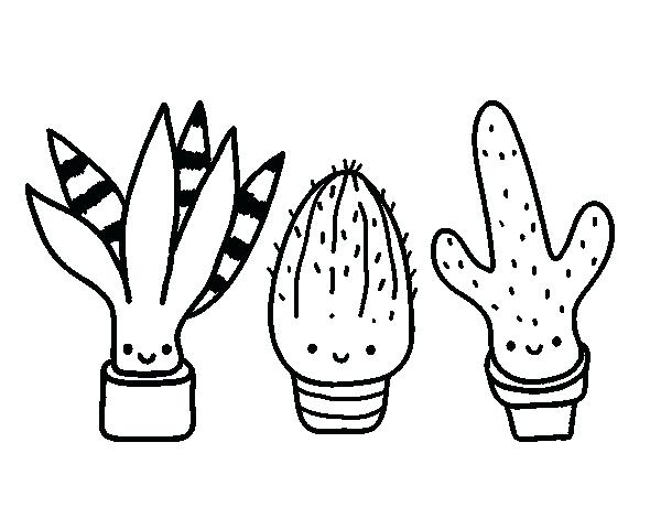 600x470 Complete Cactus Coloring Page Kids Pages Mini Free Printable
