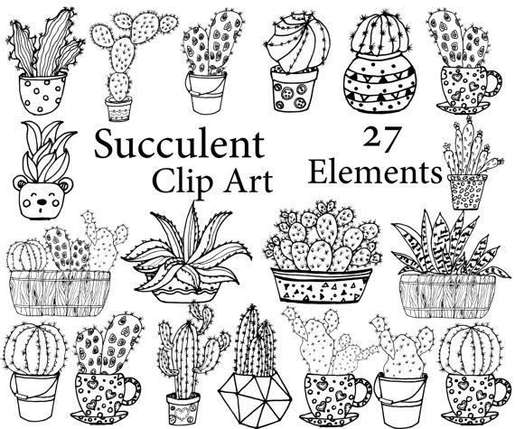 570x475 Succulent Clipart Cactus Clipart Doodle Cactus