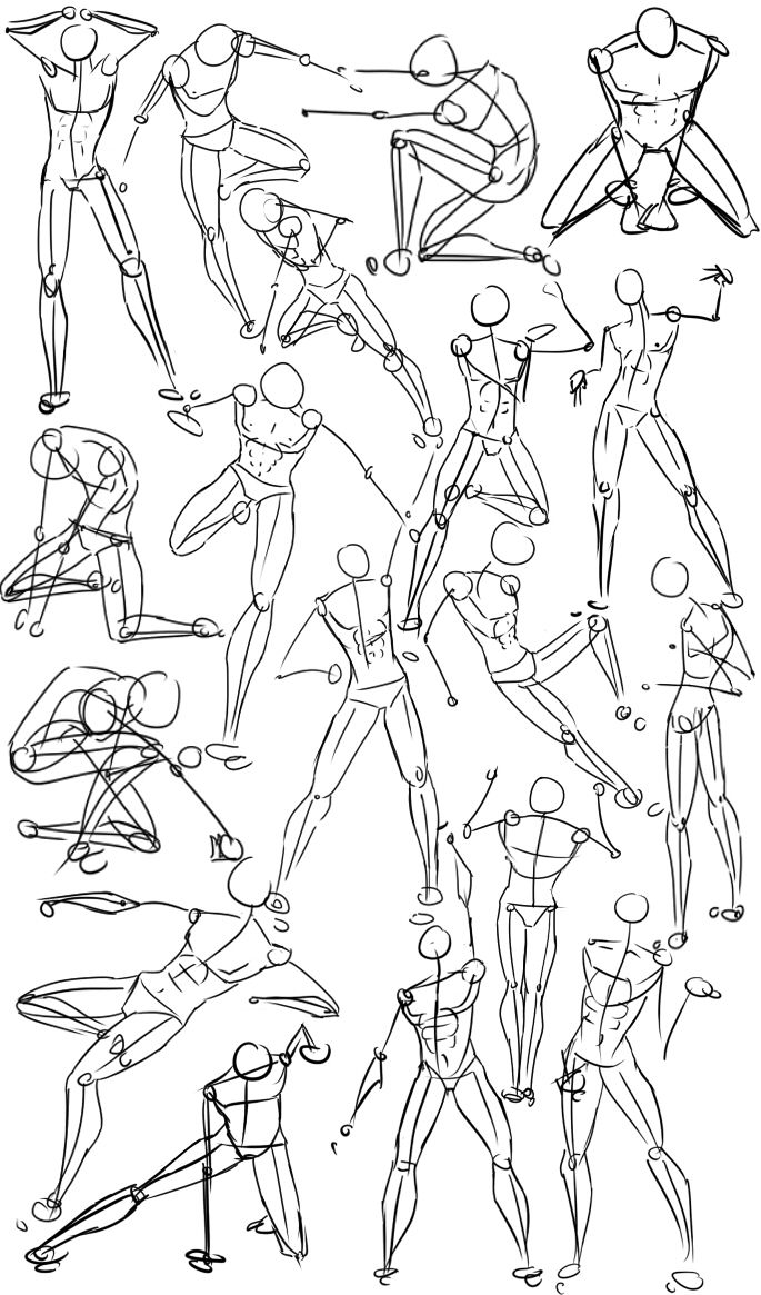 685x1165 Male Power Poses Anatomy By On @