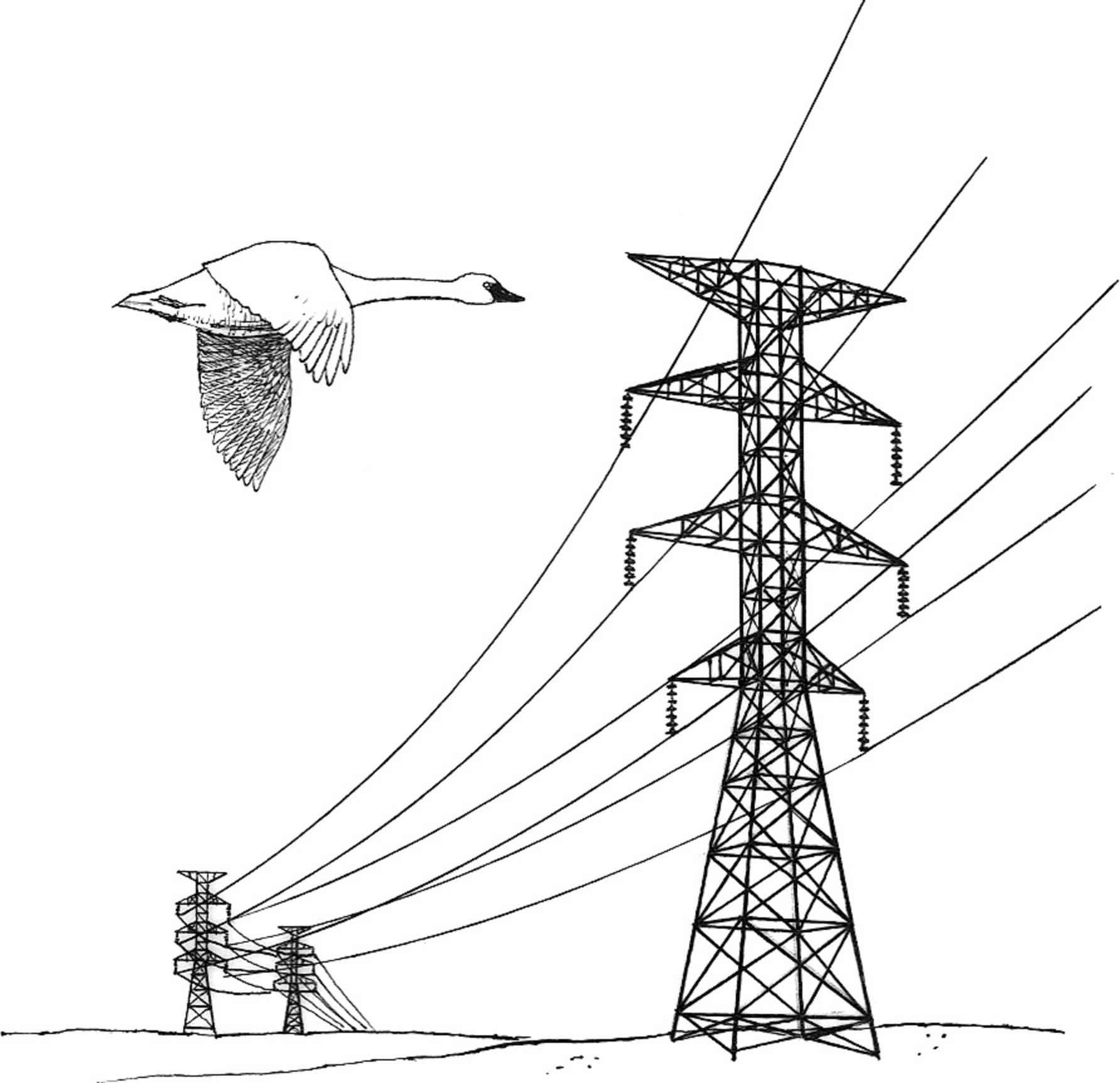 1784x1726 Filepower Lines Hazard Illustration.jpg