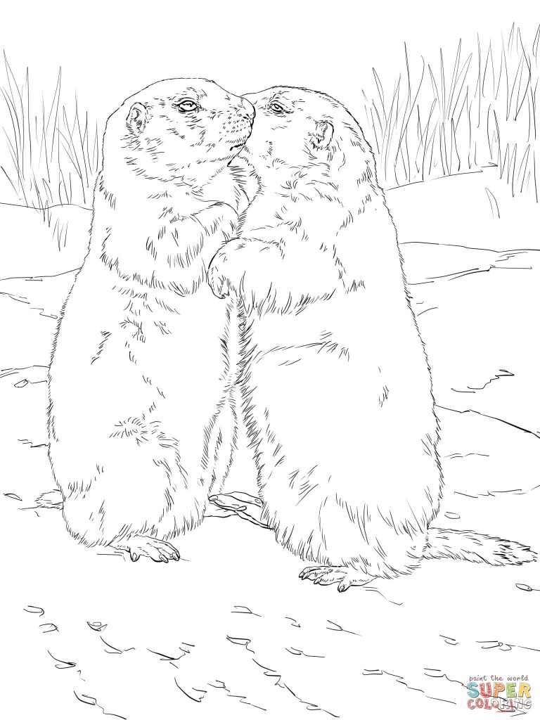 768x1024 kissing prairie dogs coloring page print download