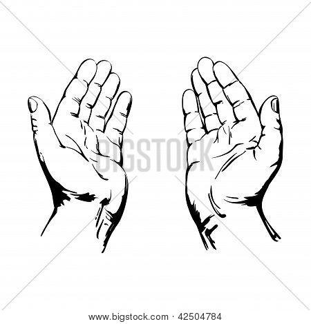 450x470 Praying Hands Vector Amp Photo Bigstock
