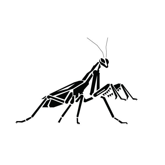 567x567 Praying Mantis Design On Behance