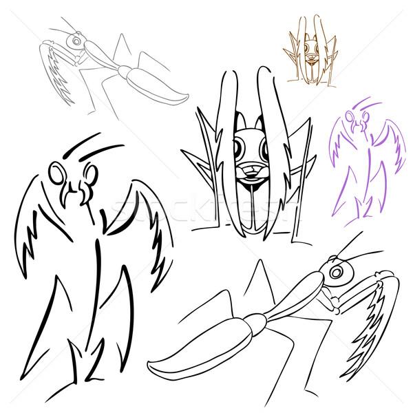 600x600 Praying Mantis Drawings Vector Illustration John Takai