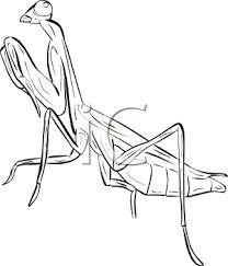 208x243 Praying Mantis Tattoos And Praying Mantis Drawings,sketches,and