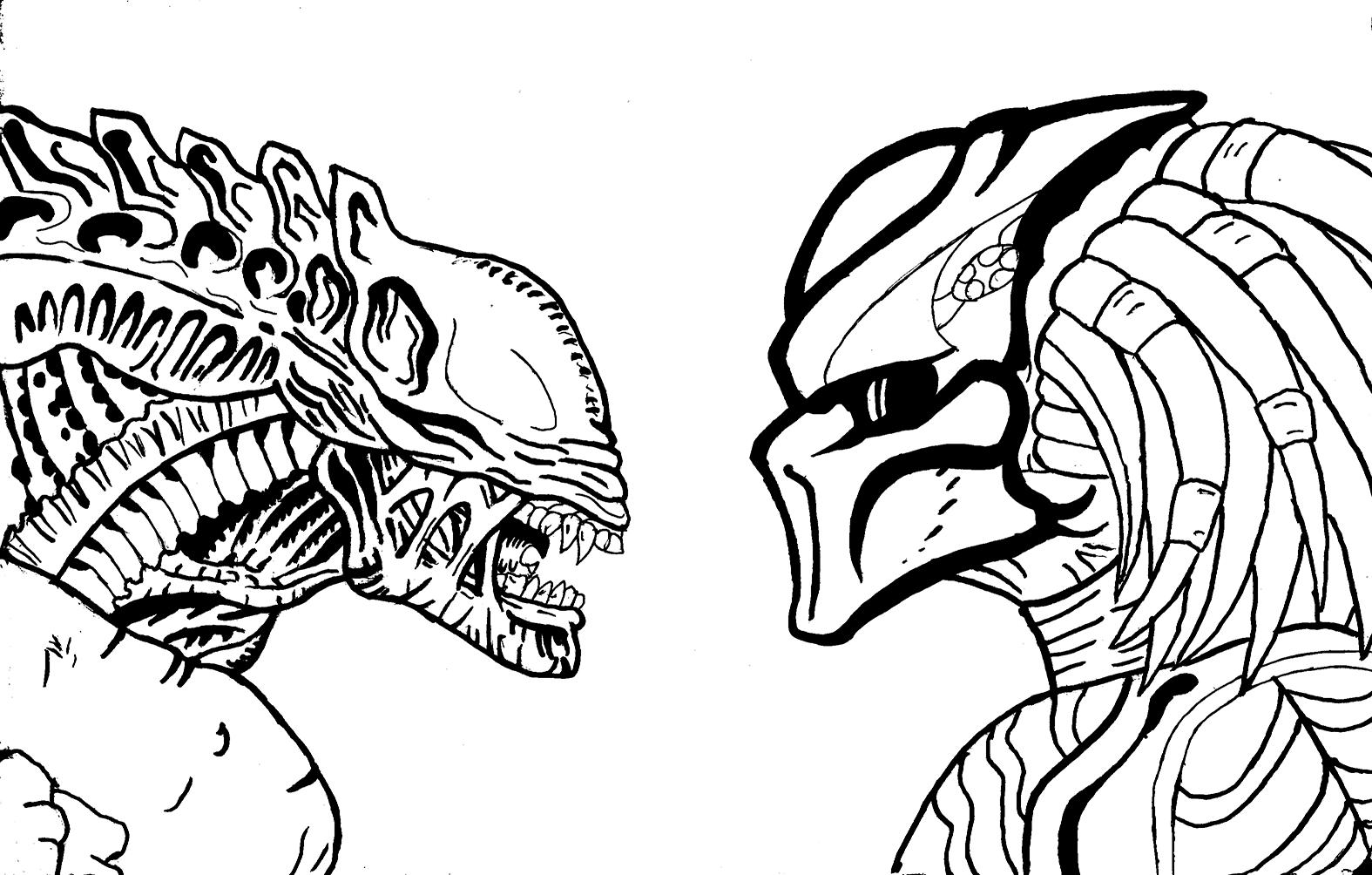 1575x1004 Alien Vs Predator Drawing Books Alien Vs Predator Funny