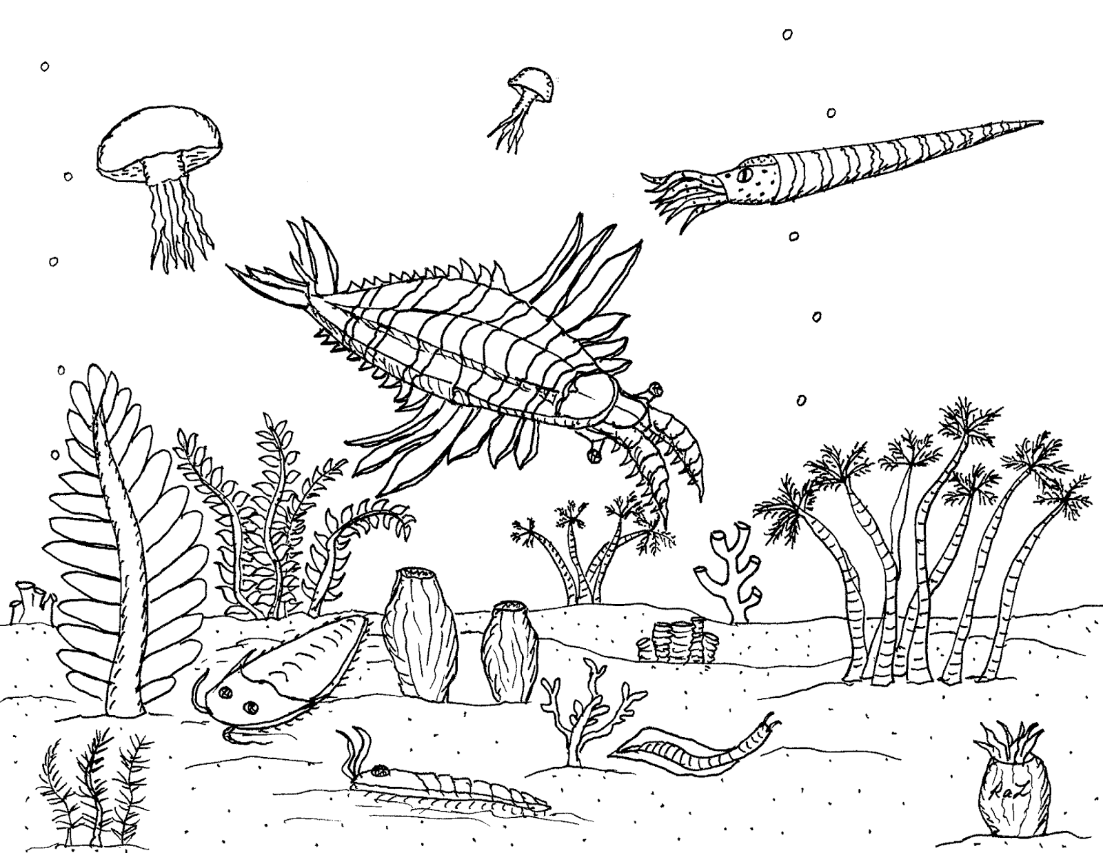 1600x1237 Robin's Great Coloring Pages Anomalocaris The Earth's First Super