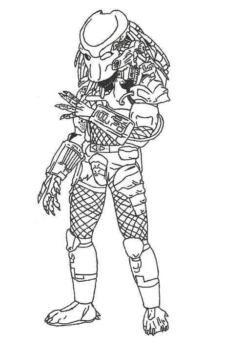 500x727 Predator Coloring Pages For Kids Gtgt Disney Coloring Pages