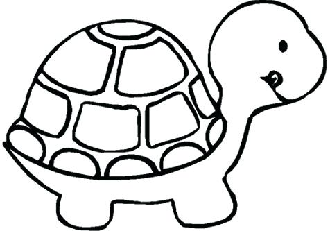 476x333 Coloring Pages Zoo Animals Animals Coloring Medium Size Turtle Art