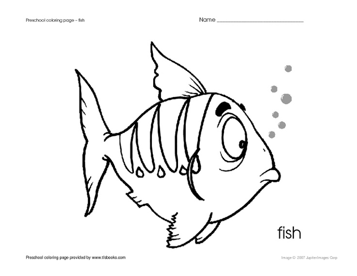 736x569 Preschool Coloring Page Fish Worksheet Lesson Planet Ocean Theme