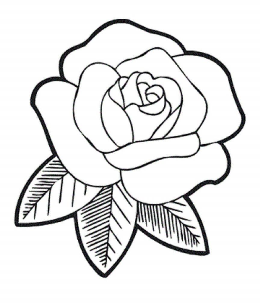 864x1024 Easy Drawings Of Roses Printable Coloring Pages For Kids