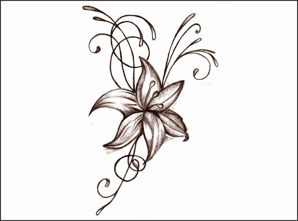 pretty flower drawing at getdrawings com free for personal use