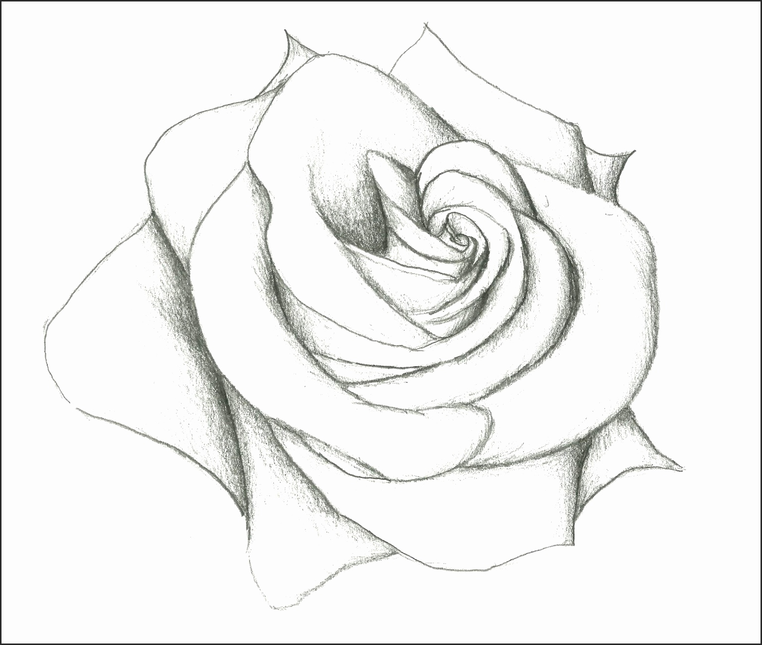 1536x1301 How To Draw Pretty Flowers Sjxse Best Of Beautiful Flowers Amp Easy
