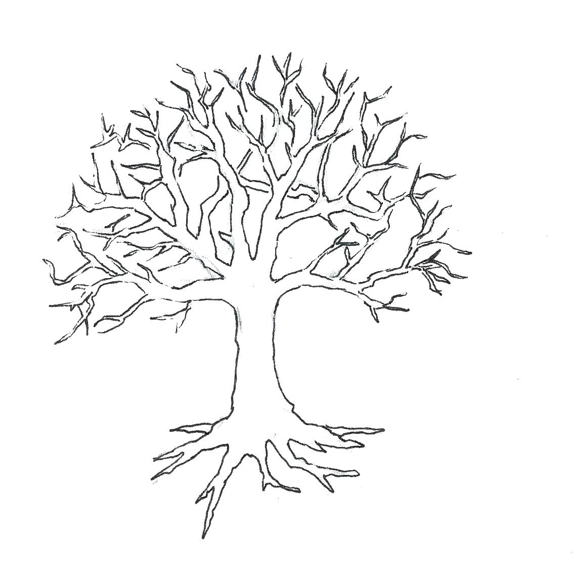 1139x1139 Printable Printable Tree Drawings Leafless Template Images