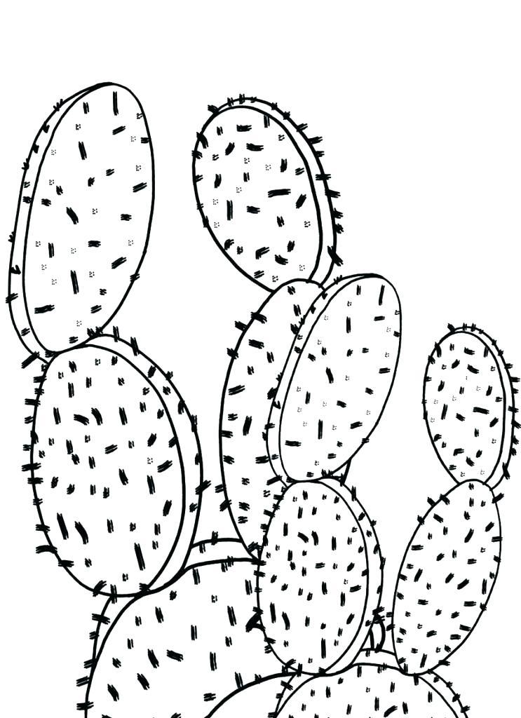 743x1024 Cactus Coloring Pin Drawn Cactus Coloring Page Free Printable
