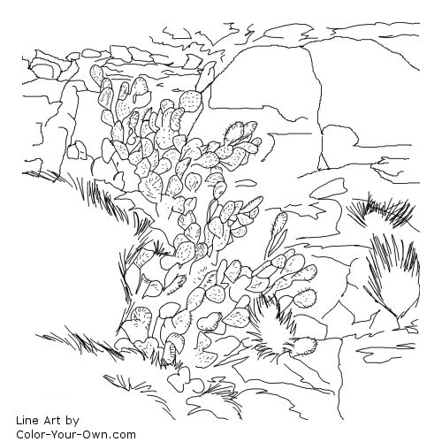 500x500 Prickly Pear Cactus And Rocks Southwestern Art Coloring Page