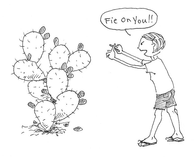 762x615 Vegan Eats Amp Treats! Mofo My Prickly Pear Adventure, Part 2