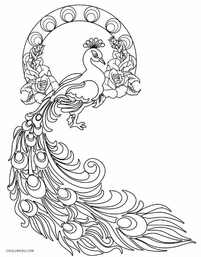 663x850 Printable Peacock Coloring Pages For Kids Cool2bkids