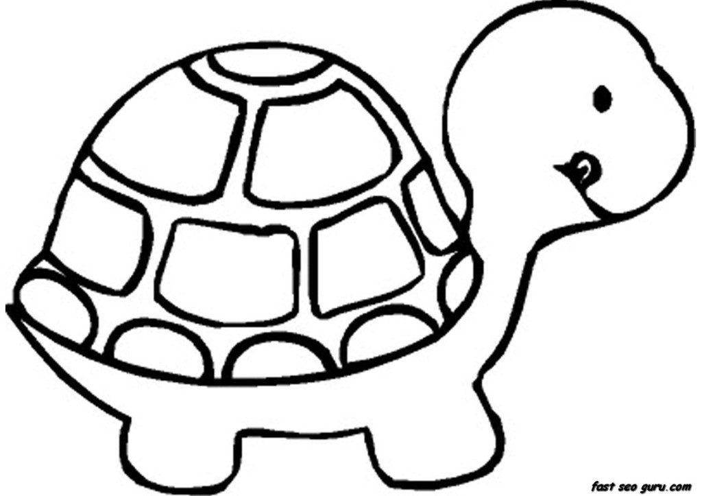 1024x723 coloring pages nice kid pictures to color turtle simple pages