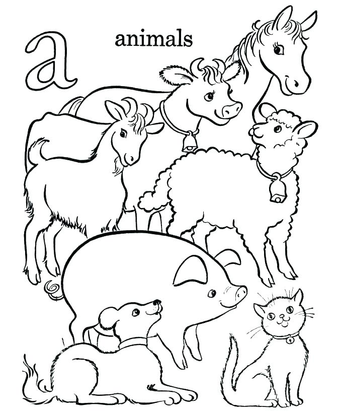 670x820 Coloring Pages Of Animals Marvelous Decoration Animals Coloring