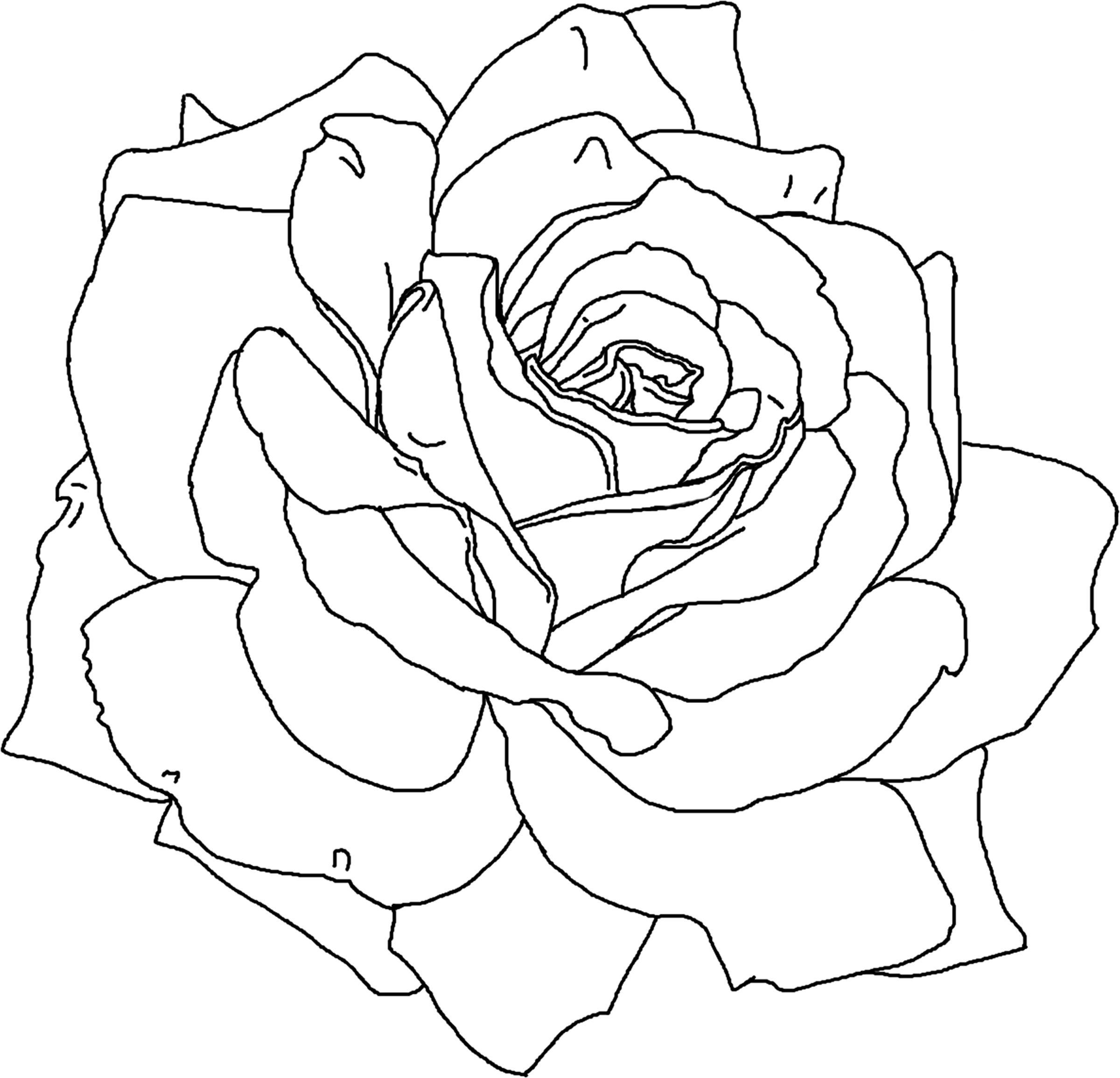 2400x2311 Rose Flower Coloring Pages Printable Flower Coloring Pages