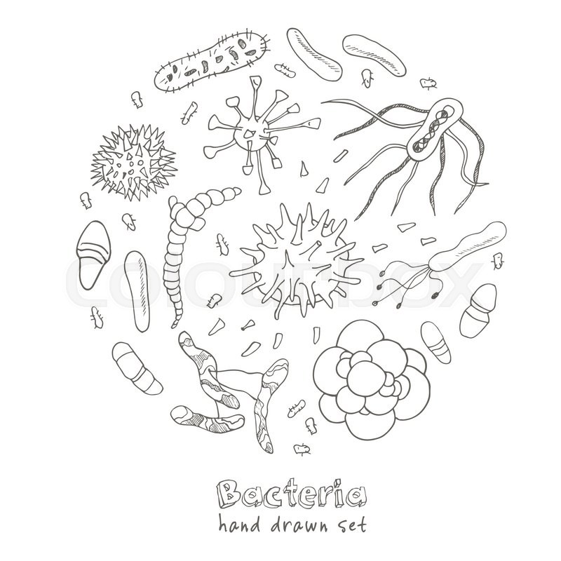 800x800 Bacteria Virus Icons Set. Sketches. Hand Drawing. Vector