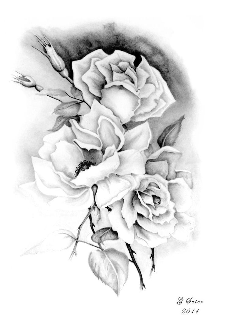 736x1071 54 Best Drawing Images On Drawings, Art Drawings And Draw