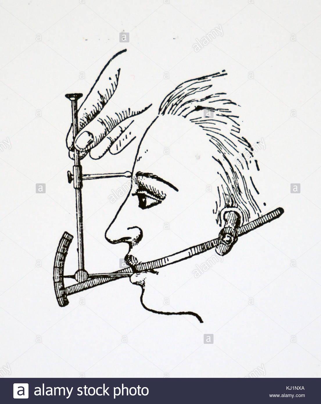 1105x1390 Profile Face Engraving Stock Photos Amp Profile Face Engraving Stock
