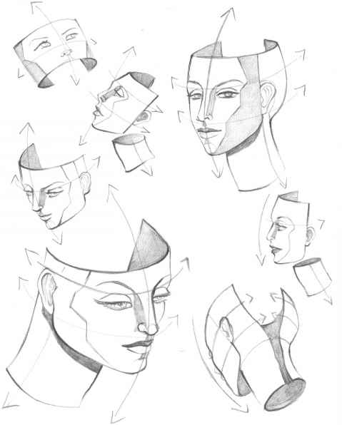 479x596 The Mouth Analysis And Structure